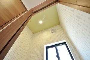 天井もモスグリーンでちょっとナチュラル系。
