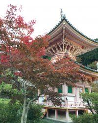 六番:壺阪寺