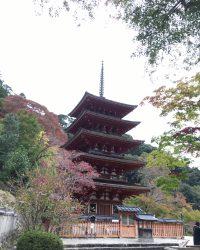 八番:長谷寺
